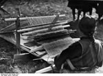 Bundesarchiv Bild 135-BB-Y-012, Tibetexpedition, Webstuhl