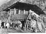 Bundesarchiv Bild 135-KA-05-085, Tibetexpedition, Haus Im Lachungtal