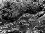 Bundesarchiv Bild 135-S-03-09-16, Tibetexpedition, Der Ringnuchu