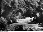 Bundesarchiv Bild 135-S-04-21-07, Tibetexpedition, Tistatal