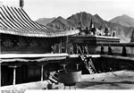 Bundesarchiv Bild 135-S-13-16-25, Tibetexpedition, Lhasa, Dächer Des Stadttempels