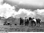 Bundesarchiv Bild 135-S-01-01-39, Tibetexpedition, Filmen Des Chomolhari