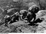 Bundesarchiv Bild 135-S-08-09-13, Tibetexpedition, Expedition Beim Klettern