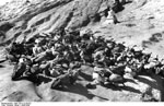 Bundesarchiv Bild 135-S-12-50-02, Tibetexpedition, Himmelsbestattung, Geier