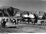 Bundesarchiv Bild 135-S-15-04-10, Tibetexpedition, Eselkarawane Vor Potala